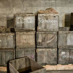 How to store roots in a root cellar