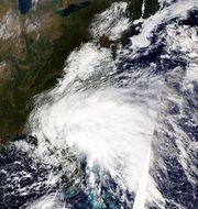 Tropical Storm Tammy (2005)