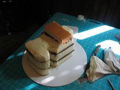 Camera Cake Carved