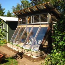A passive solar greenhouse built from cob, light clay-straw and salvage materials.