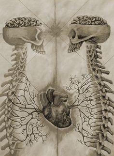 Not sure why this appeals to me but I find it very interesting skull, anatomi, two hearts, wedding invitations, bone, dark art, skeleton, brain, anatom heart