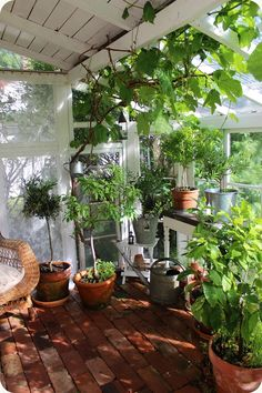 This is lovely - wonder if i could do something like this in the sunroom.
