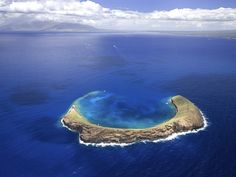 'Molokini Crater one of the most prized snorkeling destinations in the world' just added this to my bucket list