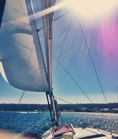 Sailing in San Diego | Covet Living