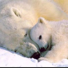 Mother's love is endless.