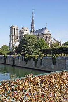 Notre-Dame Cathedral // Paris