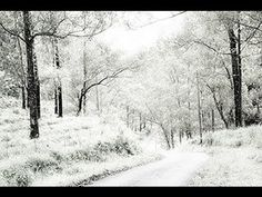 Photoshop: How to Change a Photo of SUMMER into WINTER.