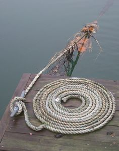 Rope on dock, Portsmouth, NH.