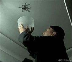 NOPE----> Can You Make It Through This Post Without Going NOPE