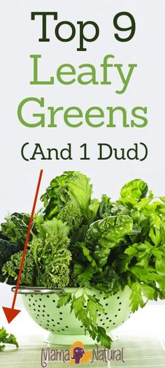 The Top 9 Leafy Greens (And 1 That You May Wanna Skip)