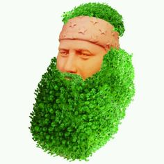 duck dynasty duck dynasti, christmas parties, christmas presents, gift ideas, duck dynasty, beard, redneck, white elephant, chia pet