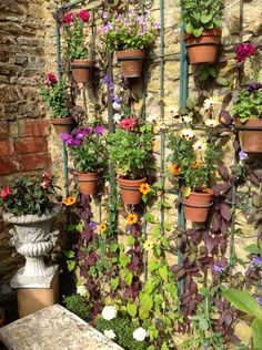 Flowers on frame in walled garden -  I like this concept with the vines