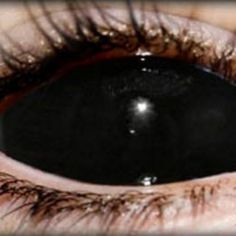 colored contacts on pinterest | colored contacts, color