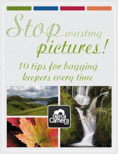 Stop wasting pictures! 10 tips for bagging keepers every time