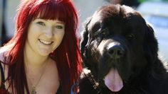 Newfs in Australia raise money for dogs in need : 2013 RSPCA Million Paws Walk
