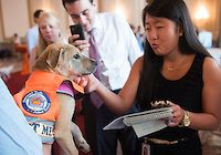 "Angela Jung, left, an intern in Rep. Chris Van Hollen's office, pets Melina, a dog from Homeward Trails Animal Rescue, during the ""Paws for Celebration"" Shelter Animal Day on Capitol Hill in the Cannon Caucus Room on Tuesday, July 24, 2012. The pet adoption event was held by the Congressional Animal Protection Caucus and the ASPCA. (Photo By Bill Clark/CQ Roll Call)"
