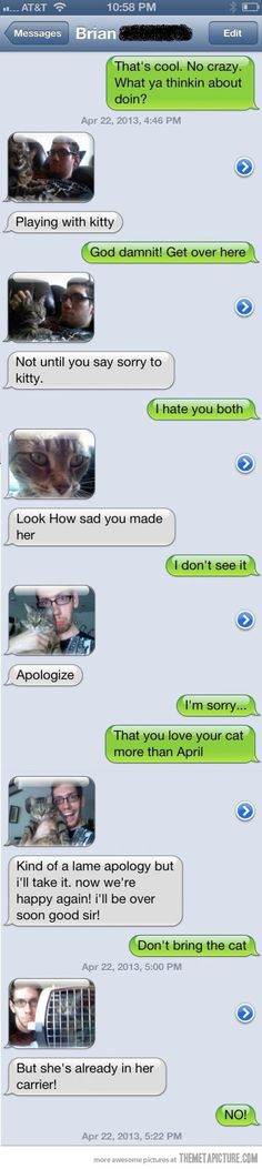 Say sorry to kitty…