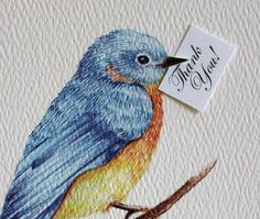 Blue Bird of Happiness Thank You Cards. Set of 50. $135.00, via Etsy.