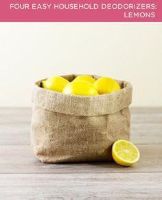 BrightNest | 2X4: Four Easy Household Deodorizers