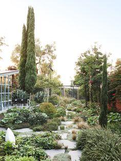 Chewton Garden Inspiration