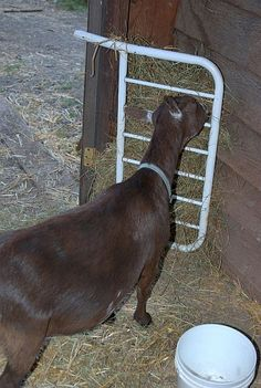 baby crib goat hay rack. Time to hit yard sales.