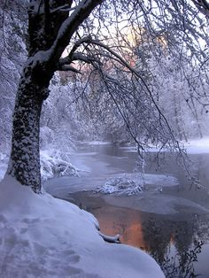 Winter time by the river