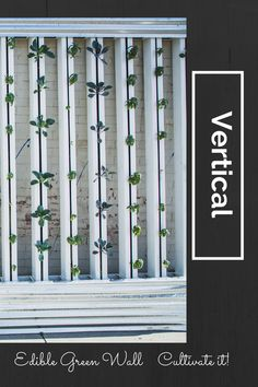 While we are waiting to hear from the Chase Main St grant judges, we would like to keep the momentum generated by our efforts for keeping Las Vegas at the forefront of vertical farming. The new...
