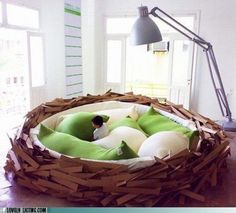 beds, future house, book, kid rooms, bird nests