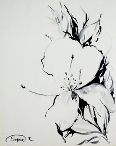 Jasmine Flower Original Drawing Black and White Art by CanotStop, $38.00