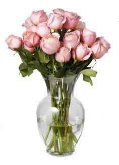 decor flower, fresh flowers, stem