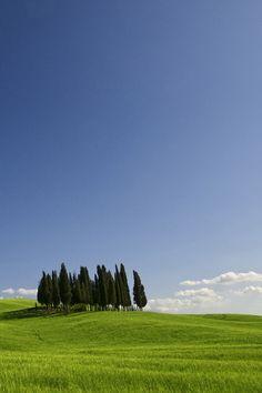Tuscany ~ Italy