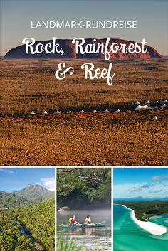 ROCK, RAINFOREST & R