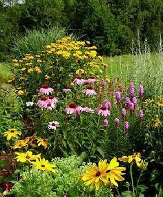how to design a perennial garden