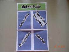 treasures, idea, new homes, teacher treasur, cycl foldabl, foldifun factori, factories, water cycle, teachers