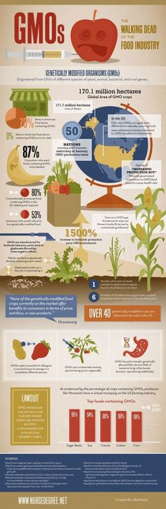 Genetically Modified Organisms Infographic
