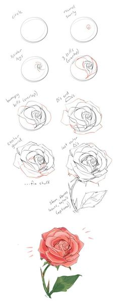How to draw a rose t