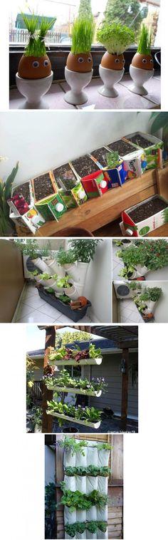 Simple DIY Ideas for an indoor garden-especially the carton planters-great use for almond milk containers! almond milk, diy ideas, garden ideas, diy gifts, herbs garden, indoor gardening, unusual planters, egg, garden fun