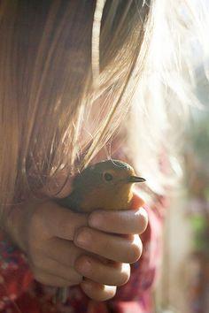 robin, little birds, disney princesses, beautiful hands, hands holding bird, special friends, healing hands, helping hands, wild birds
