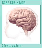 Drugs increase memory image 2