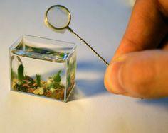 ɛïɜ The World's Tiniest Aquarium ~   By Edith Zimmerman ɛïɜ