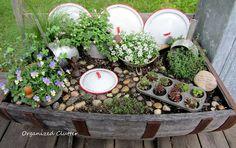 kitchens, garden ideas, fairies, fairi garden, wine barrels, muffin tins, clutter, kitchen fairi, mini gardens