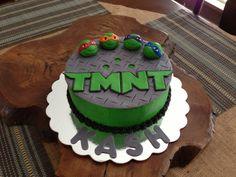 TMNT cake i did!  Mallory Gray M50cakesofgray@yahoo.com cat cake, tmnt cake, amaz cake