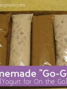 How cool is this?! How to make Homemade Go-Gurts -- and a really easy homemade yogurt recipe, too!
