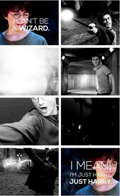 Just Harry