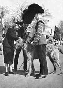 Princess Mary, Countess of Harewood pins the shamrock onto Shaun, the mascot of the Irish Guards