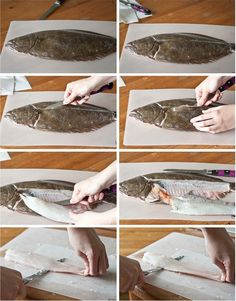Step-By-Step: How to Fillet Flat Fish >> Blogging Over Thyme