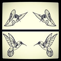 @frametastic hummingbirds #tattoo #tattoos #ink #sketch #hummingbird