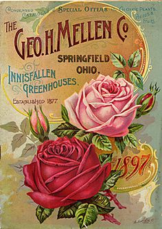Catalog Information    Company Name:  The Geo. H. Mellen Co.    Catalog Title:  Condensed Catalogue of Special Offers in Choice Plants, Seeds, & Fruits (1897)  Publication Information:  Springfield, OH  United States  Category(ies) of Cover Art:  Roses