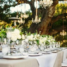 table settings, white flowers, the knot, tree, wedding centerpieces, green flowers, outdoor weddings, reception tables, outdoor receptions