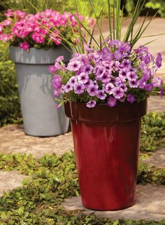 Add vertical interest + style to your patio with these tall upright Bombay Garden vases. View these planters and our plants at your local Walmart